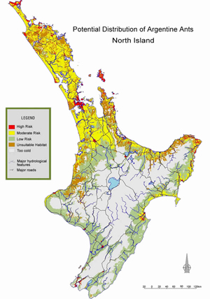 predicted distribution of Argentine ants in North Island